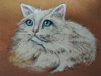 ペットロスの方がペットのリアルな似顔絵の注文(オーダー)前に見る作品~立体感ある愛猫を描いた肖像画のグッズ