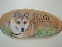 ペットロスの方がペット似顔絵の注文(オーダー)依頼前に見る作品~草花に囲まれた愛犬が元気に出迎えるウエルカムボードのグッズ